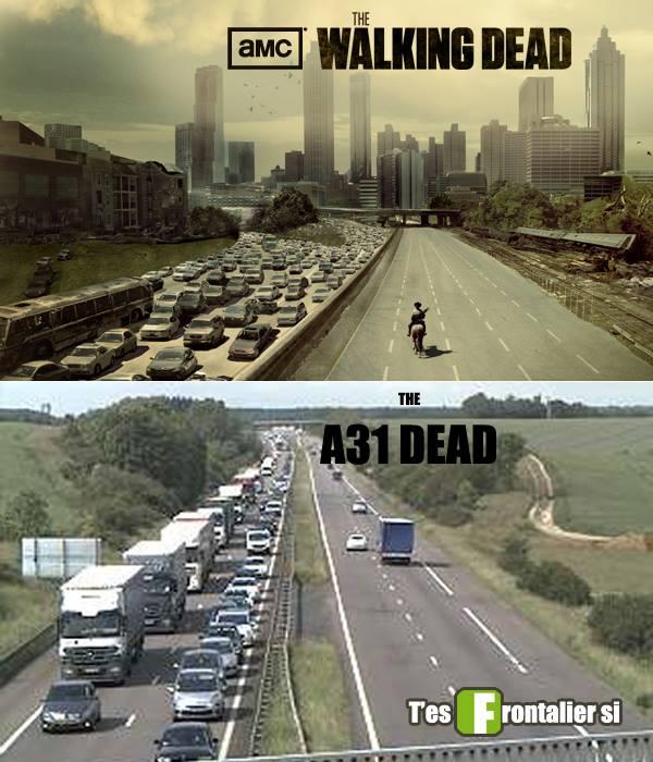 A31-walking-dead