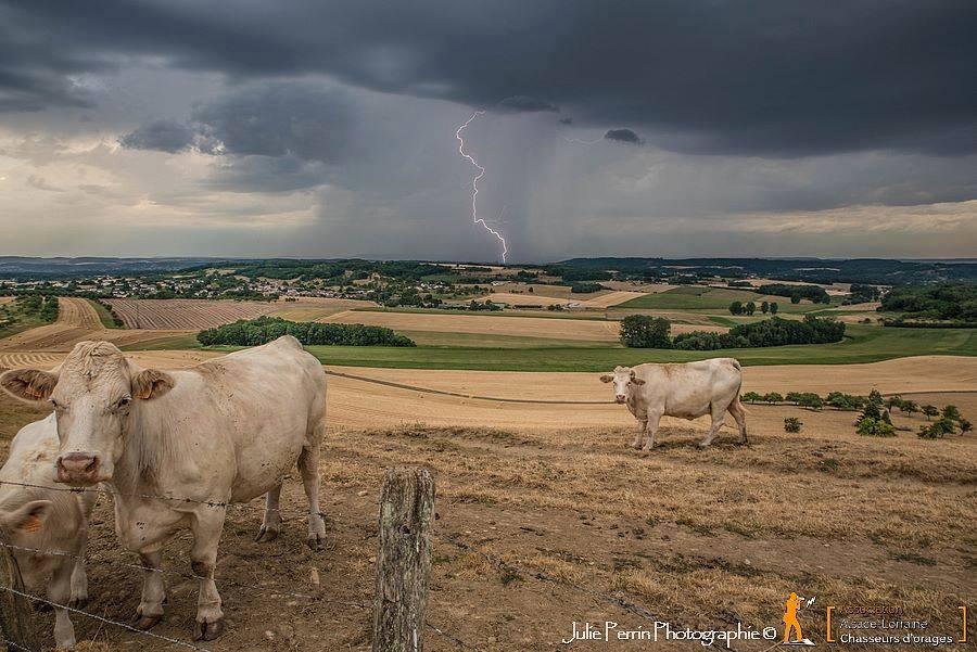 chasseur-d'orage-lorraine