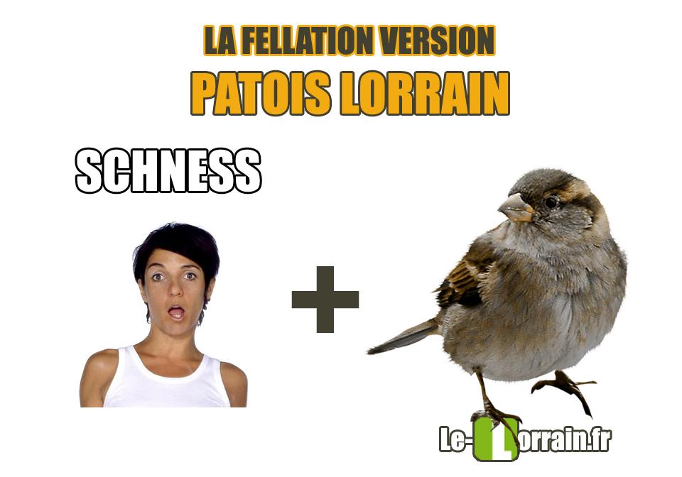fellation-lorraine