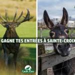 CONCOURS : Gagnez 2 entrées au parc de Sainte-Croix