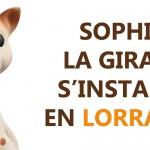 Sophie la girafe sera bientôt fabriquée en Lorraine!