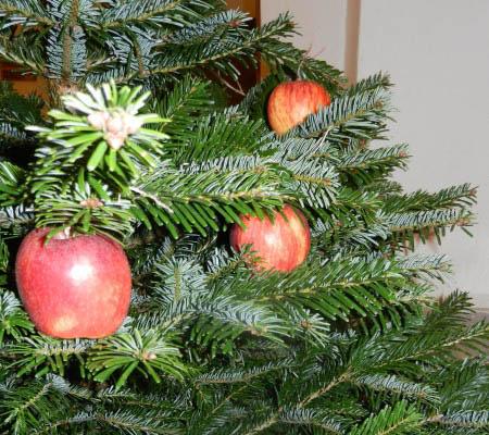 sapin-noel-deco-pomme