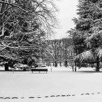 Il neige déjà au Luxembourg et en Belgique !