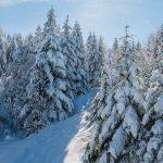 Gérardmer dans le top 3 des destinations de nouvel an préférées des Français