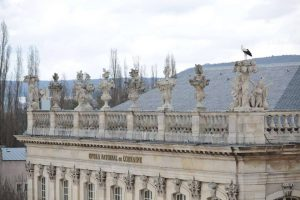 cigognes-opera-nancy