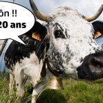 La plus ancienne foire de France, la Foire de Poussay, s'installe ce week-end !