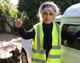 Brigitte Bardot aussi solidaire avec les gilets jaunes