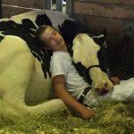 Un garçon et sa vache perdent un concours, s'endorment et gagnent le coeur des internautes