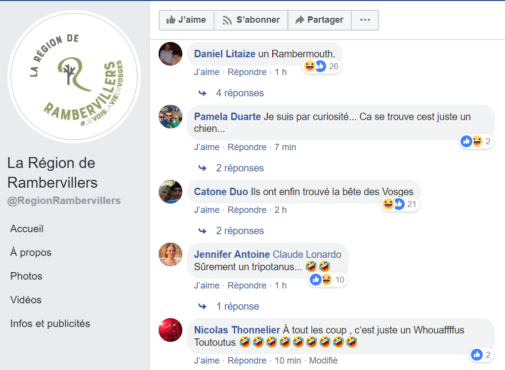 commentaires-dinosaure-rambervillers