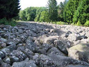 champ-de-roches-vosges