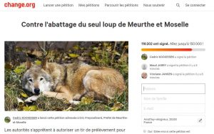 pétition-loup-54-change-org