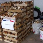 Ils se font verbaliser après avoir cueilli 400 kg de champignons dans les Vosges