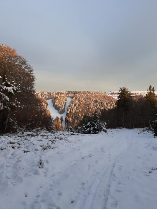 rando-hautes-vosges-neige-88