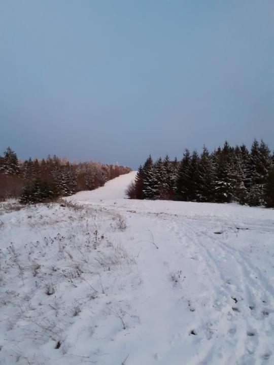 rando-vosges-ski-neige-2019-88