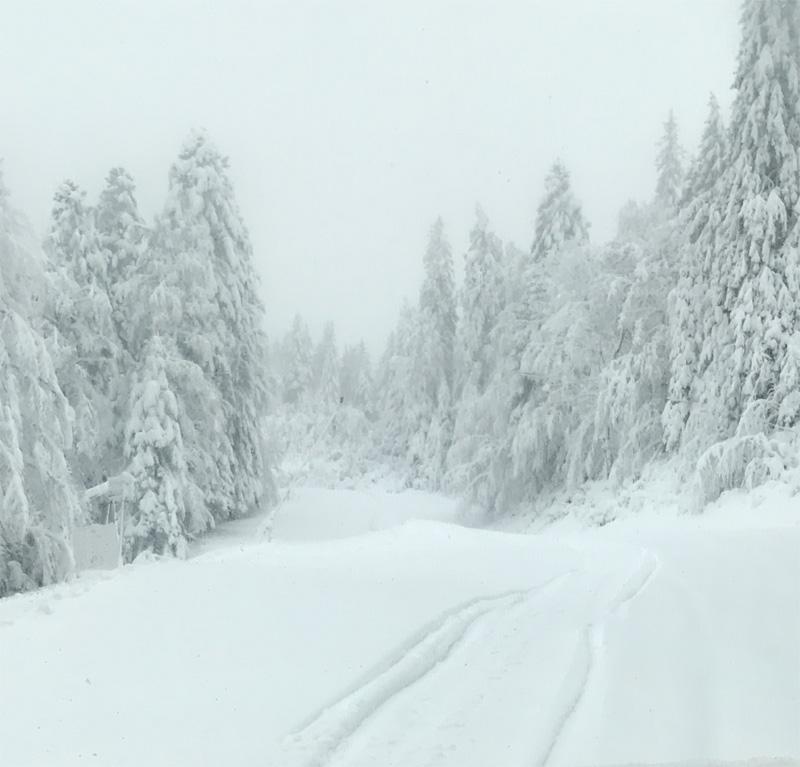 60-cm-neige-gerardmer-decembre-2019