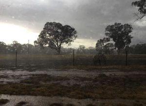 pluie-australie-janvier-2020