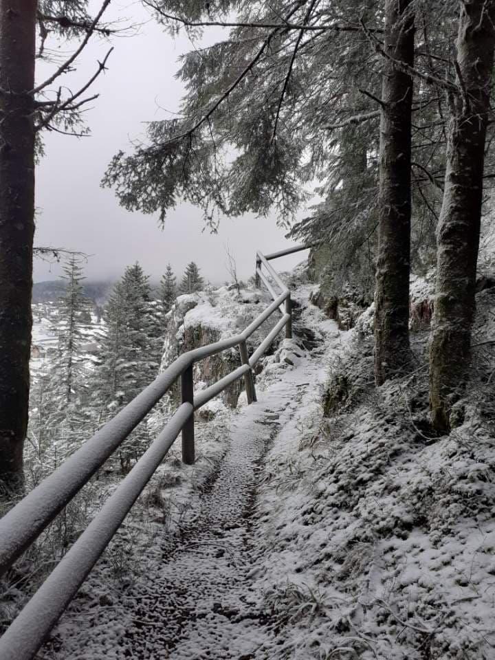 balade-gerardmer-hiver