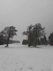 balade-gerardmer-neige