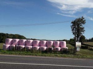 Recolte-papier-toilette-lorraine