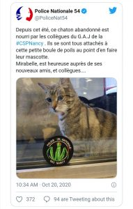 mirabelle-chat-police-nancy