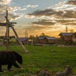 Sainte-Croix élu meilleur « Zoo et Parc Animalier » de France pour la 2ème année consécutive par le magazine Capital